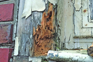 Nach Freilegung der morschen Eckverbindungen zeigten sich die Schäden an den Bestandsfenstern
