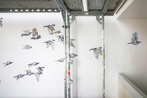 Bei den Malereien handelt es sich um eine Mischung aus Abstraktion und Naturalismus: Sich überlagernde Landschaften mischen sich mit der exakten Darstellung von Vögeln und Bäumen