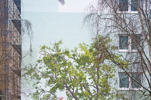 Hätte die Birke im Vordergrund Blätter, fiele die Entscheidung schwer, welcher Baum echt und welcher gemalt ist