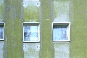 """Rechts: Mit den """"AquaBalance""""-Putzen gehört ein solcher Algenbefall an einer Fassade der Vergangenheit an. In Zukunft bietet Saint-Gobain Weber alle seine Außenputze ohne Bizoid, aber dennoch mit verlässlichem Algenschutz an"""