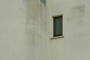 Pilzbewuchs auf dem Anstrich eines Putzes. Der Verzicht auf einen Dachüberstand ist Ausdrucksmittel moderner Architektur, fördert aber häufig den Bewuchs