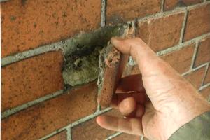 Schadensbild durch Korrosion am eingemauerten Gerüstanker: Bei der Instandsetzung einer Backsteinfassade, erbaut um 1896, wurden eingemauerte Gerüstanker vorgefunden. Diese bestanden aus Stahlrohr, am Ende zu einem Anker geformt, mit einem eingeschweißten Verschluss (Deckel), in dem man einen Haken, wie bei einem Bajonettverschluss, einhängen konnte. Einfach und funktionssicher, aber nicht gegen Korrosion geschützt<br />