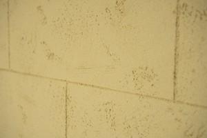 Nach dem Abtrocknen der Flächen und dem Einhalten der Standzeit können die Oberflächen auch lasierend gestrichen werden