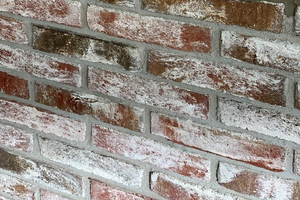 Ausgangssituation: feuchtes und versalzenenes Mauerwerk