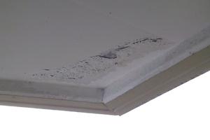 Farb- und Putzabplatzungen an der Balkonunterseite durch Sickerwasser