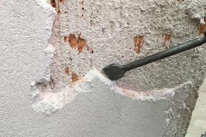 Putze, Anstriche und Beschichtungen müssen mindestens 80 cm über der sichtbaren Schadenszone entfernt werden
