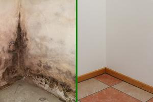 Vorher – nacher: Durch die Sanierung wurden aus dem alten, muffigen Keller wieder attraktive Nutz- und Hobbyräume