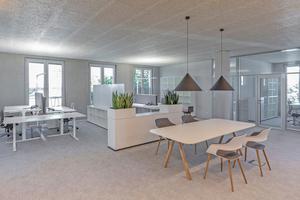 In ihrem neuen Verwaltungsgebäude setzt die Josef Hebel Bauunternehmung auf teiloffene Büros mit Akustikplatten von Joma zur Schallabsorption ⇥
