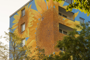 Der Innere der Sonnenblumen ist nach der Fibonacci-Reihe aufgebaut: Jede Sonnenblume hat in diesem Bereich 34 linksdrehende Spiralen und 55 rechtsdrehende Spiralarme