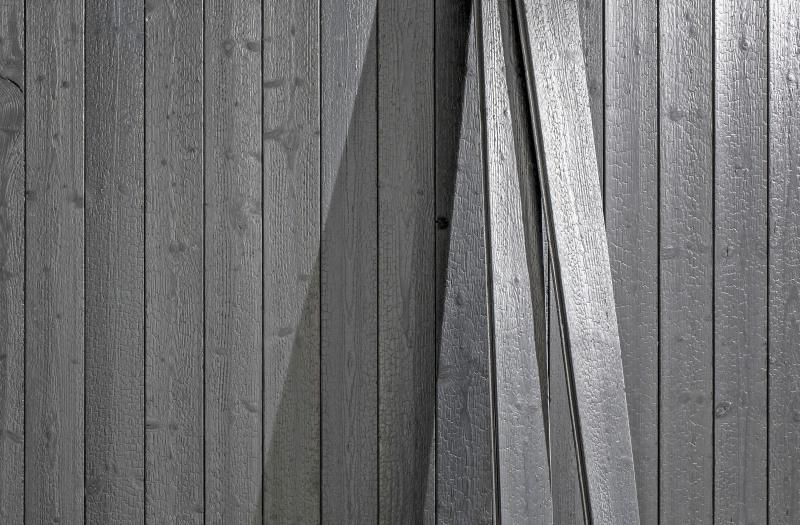 hartholzarten in deutschland
