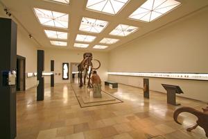Mammutskelett in einem Ausstellungsraum im Obergeschoss des Landesmuseums für Vorgeschichte<br />Text + Fotos: Thomas Wieckhorst