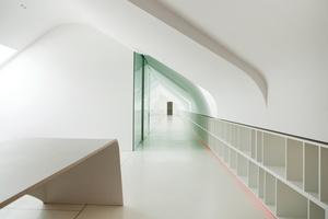 Langgezogene Regale ziehen sich durch das komplette Büro, farbige LED-Bänder im Sockel sind ein optisches Highlight<br />