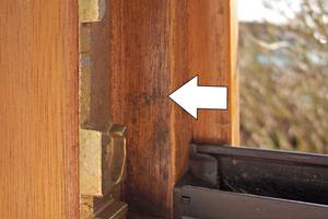 Pilzbefall durch mangelnde Reinigung der Fenster- und Türfalzen, gefördert durch Dauerkippstellung