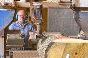 Sägewerker Enrico Adolph verarbeitet Eichenstämme zu Bauhölzern