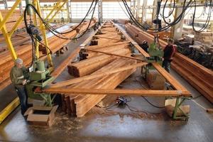 Für moderne Nagelplattenbinder gibt es mittlerweile Zulassungen für Spannweiten bis zu 35m