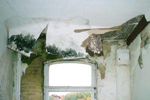 Zahlreiche Feuchtigkeitsschäden galt es für die Handwerker im Zuge der Sanierung der alten Sparkasse in Bruchhausen-Vilsen zu beheben<br />