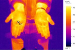 Auf die richtige Fokussierung des zu messenden Ausschnitts kommt es an. Temperatur am identischen Messpunkt : scharf 31,2°C