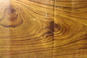 Von echtem Holz nur durch die Knickspuren zu unterscheiden: Italienischer Nussbaum in Öl gemalt auf Karton<br />Fotos: Christian Metzeroth