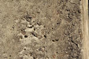 Die ungeschützt erstellte Beton-Außenhülle des Nebengebäudes einer jüdischen Begegnungsstätte auf dem Gelände einer alten Synagoge wies massive Schäden in der Stahlbetonhülle auf. Zusätzlich gab es Schimmelschäden im Innenraum. Die Instandsetzung gelang durch die Erstellung einer wasserdichten Innenschale, die es ermöglichte, das äußere Erscheinungsbild des denkmalgeschützten Baus unverändert zu belassen. Dabei konnten durch ein spezielles, vom Innenraum aus ausgeführtes Injektionsverfahren Rissweiten von bis zu 0,1 mm mit Polyurethan verpresst werden.