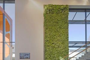 Mitte: Der hängende Garten im Foyer verbessert nachweislich die Luftqualität