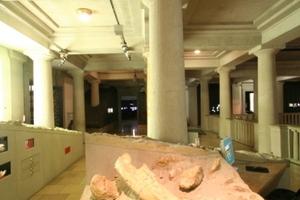 Der Weg durch die Ausstellungsräume wird durch das Atrium geführt<br />