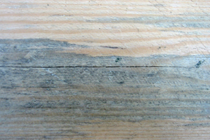 Holzbauteil mit Bläuebefall