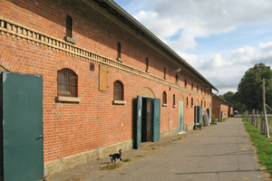 Vorher: Das ehemalige Remontedepot auf der Schwäbischen Alb diente einst der Aufzucht von Militärpferden<br />