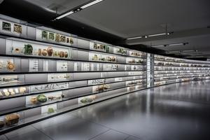Vitrinen mit Alltagsgegenständen aus der Bronze- und Eisenzeit