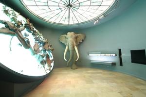 Kleiner Ausstellungsraum im Obergeschoss des Museums<br /><br />