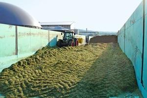 Nach der Ernte wird das Wiesengras siliert und anschließend ausgewaschen. Aus der so gewonnenen Zellulose wird der Einblasdämmstoff hergestellt