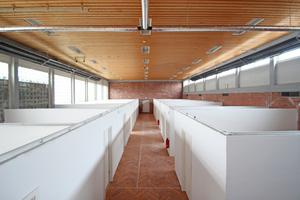 """Trockenbauwände teilen die Hallenfläche in """"Wohnkabinen"""" auf, die der wirtschaftlichen Beheizung, Belüftung und Belichtung wegen nach oben hin offen bleiben<span class=""""bildnachweis"""">Fotos: Thomas Wieckhorst</span>"""